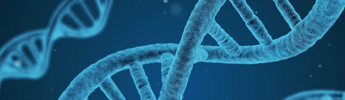 Regeneracja własnymi komórkami macierzystymi z osoczem bogatopłytkowym – Nanolipotransfer